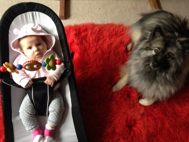 Baby bouncer chair with dog