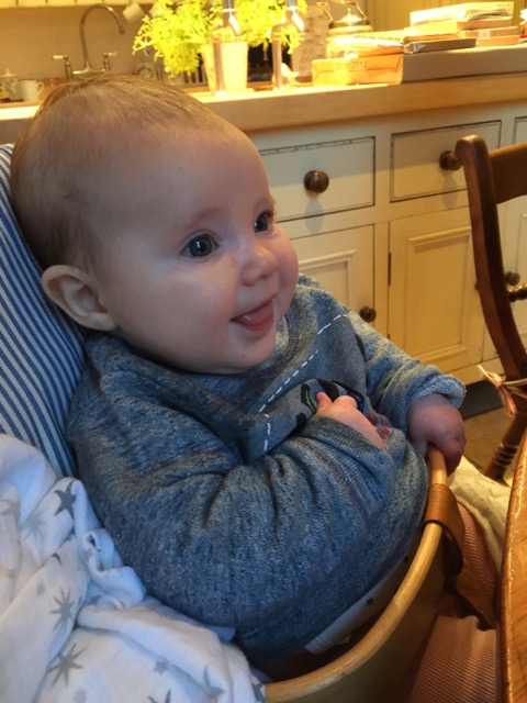 DamBaby high chair 4 month baby