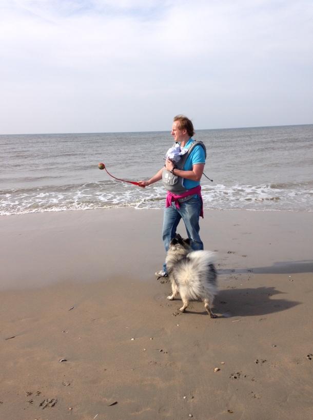 dog baby amsterdam beach alone